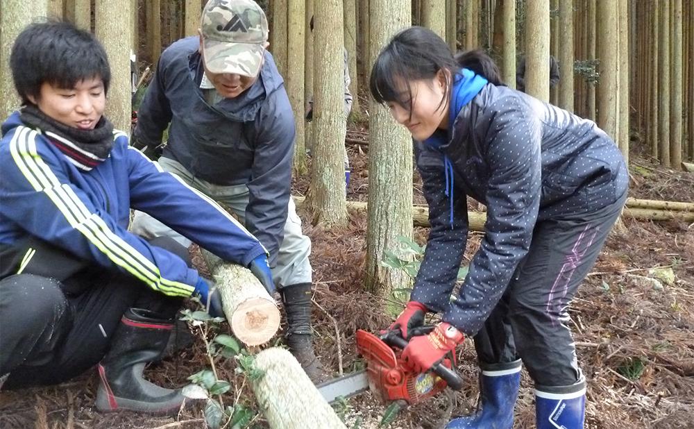 プチコンテンツ制作/北山杉の伐採